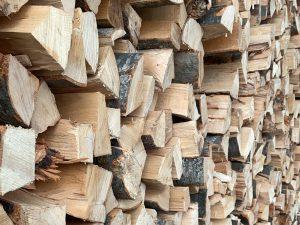 buchenholz